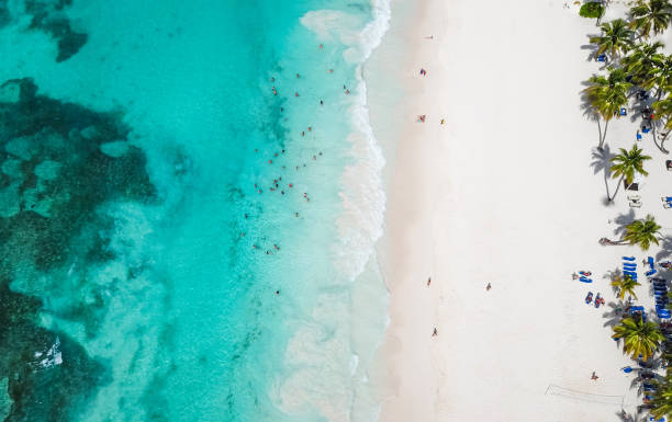 incredible view of the white sandy beach from a bird's eye view. top view of beautiful white sand beach with turquoise sea water and palm trees, aerial drone shot. - caribbean stock pictures, royalty-free photos & images