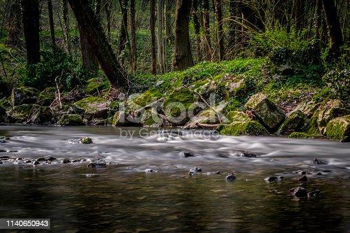 Inde River at Forest Klauserwäldchen, Frankenwäldchen, Kornelimünster, Aachen, Germany