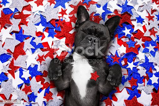 istock independence day 4th of july dog 696566570