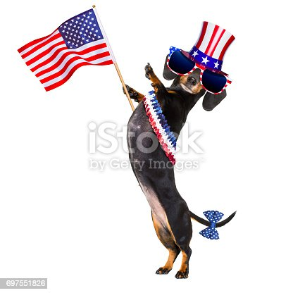 509363072istockphoto independence day 4th of july dog 697551826