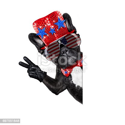 istock independence day 4th of july dog 697551848