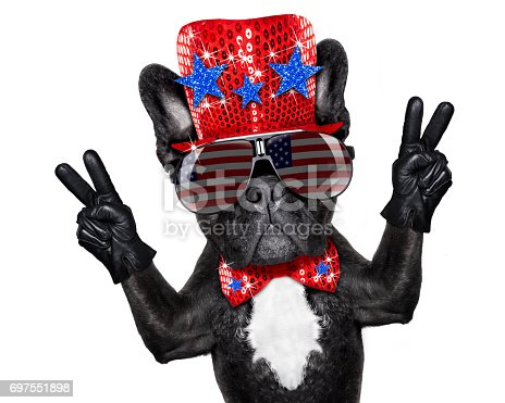 istock independence day 4th of july dog 697551898