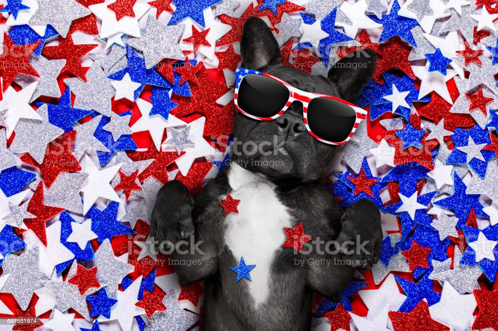 independence day 4th of july dog french bulldog waving a flag of usa and victory or peace fingers on independence day 4th of july with sunglasses American Culture Stock Photo