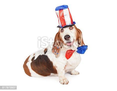 istock Independence Day Basset Hound 517873507