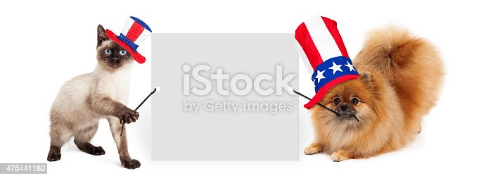 istock Independence Day Dog and Cat Holding Up Banner 475441160