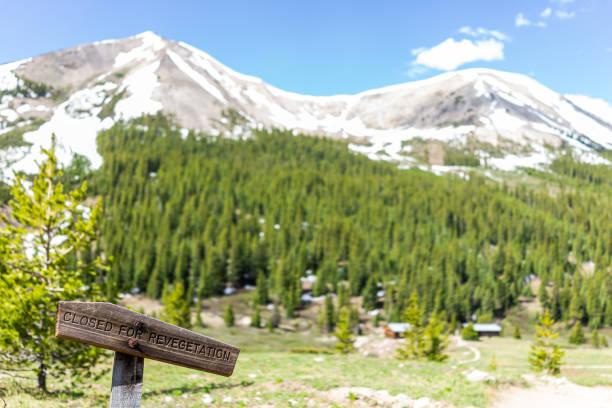 bağımsızlık pass madencilik townsite ve kar dağ zirveleri ile colorado white river ulusal ormanı'nda revegetation için kapalı için iz üzerinde ahşap tabela - independence day stok fotoğraflar ve resimler