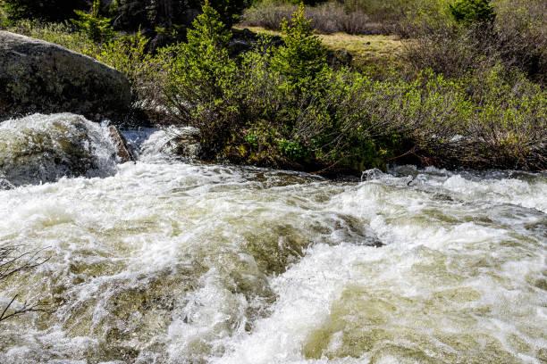 colorado white river ulusal ormanı'nda altın mayınlı azgın kükreyen çatal vadi dere yakın çekim ile bağımsızlık pass madencilik townsite - independence day stok fotoğraflar ve resimler
