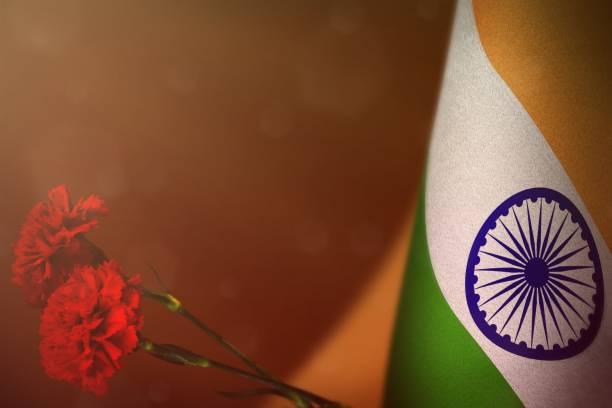 印度國旗, 紀念老兵或紀念日, 有兩朵紅色康乃馨花。榮耀給印度英雄的戰爭概念上紅色深色天鵝絨。 - thank you background 個照片及圖片檔