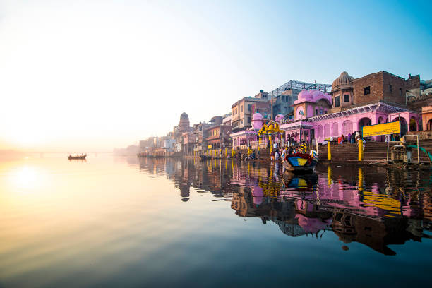 india - destination stock pictures, royalty-free photos & images