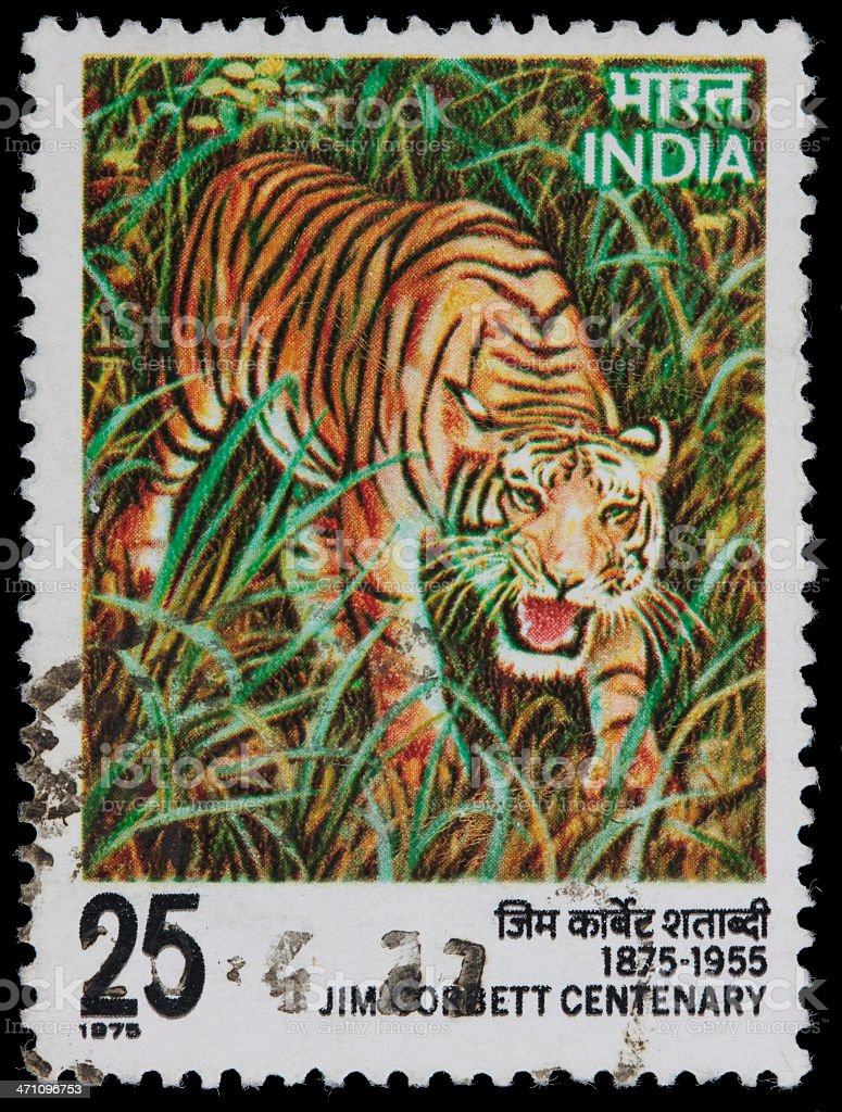 India Tiger postage stamp royalty-free stock photo