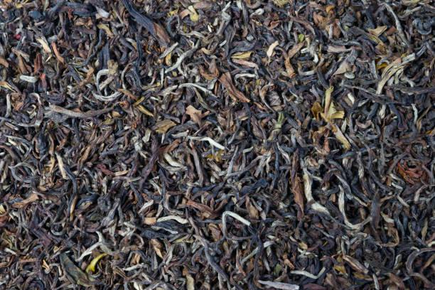 Indian black tea stock photo
