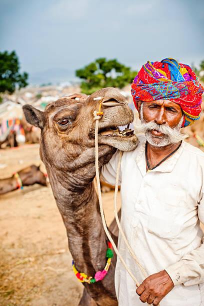 Indian Camel Vendor stock photo