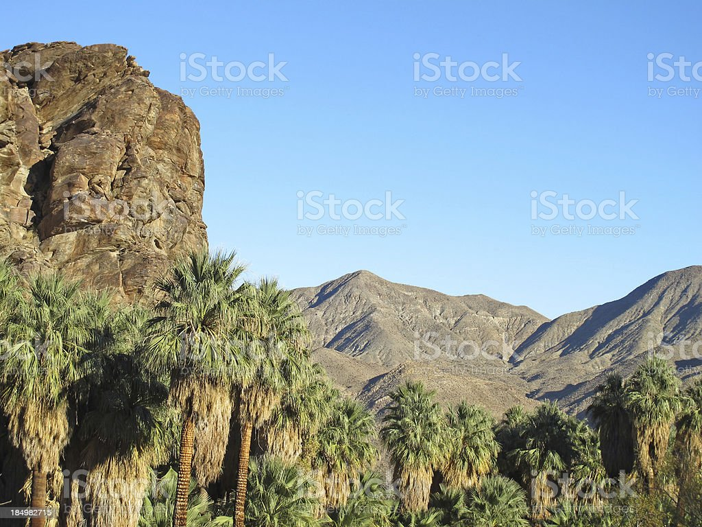 Indian Canyons hike near Palm Springs stock photo