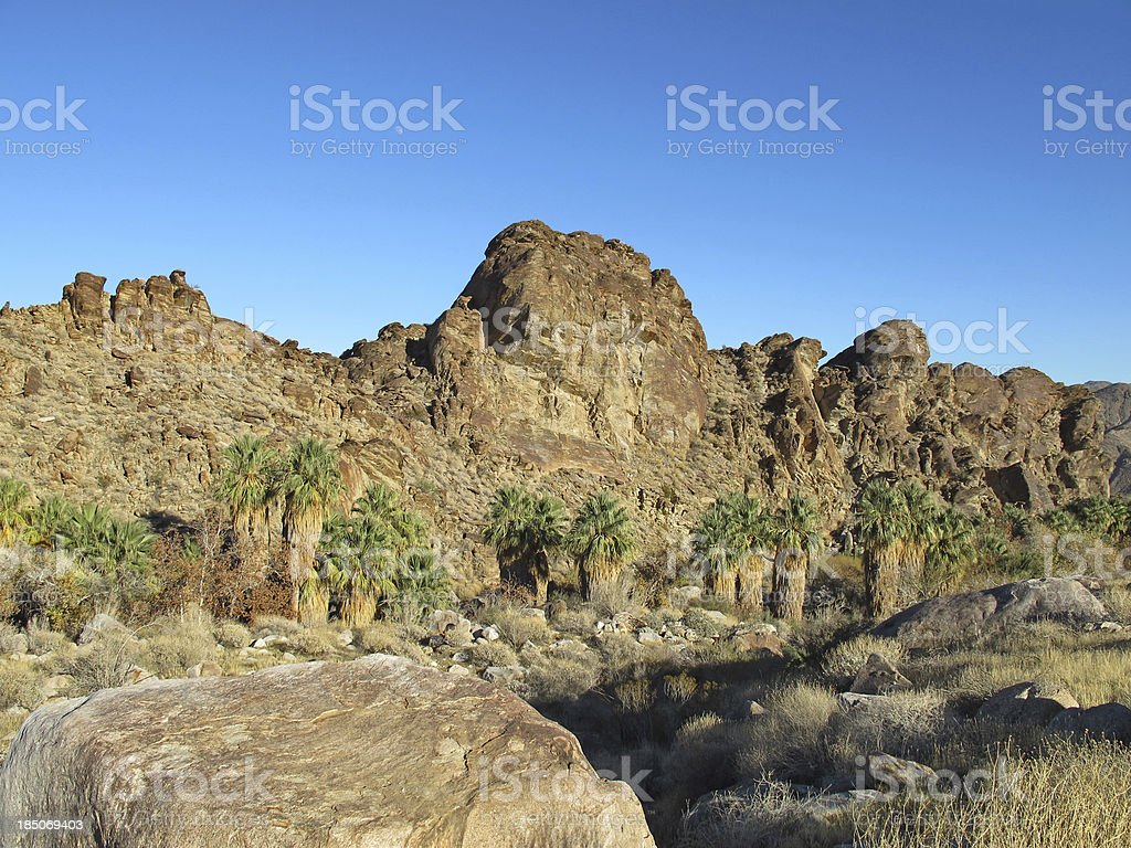 Indian Canyons hike near Palm Springs royalty-free stock photo