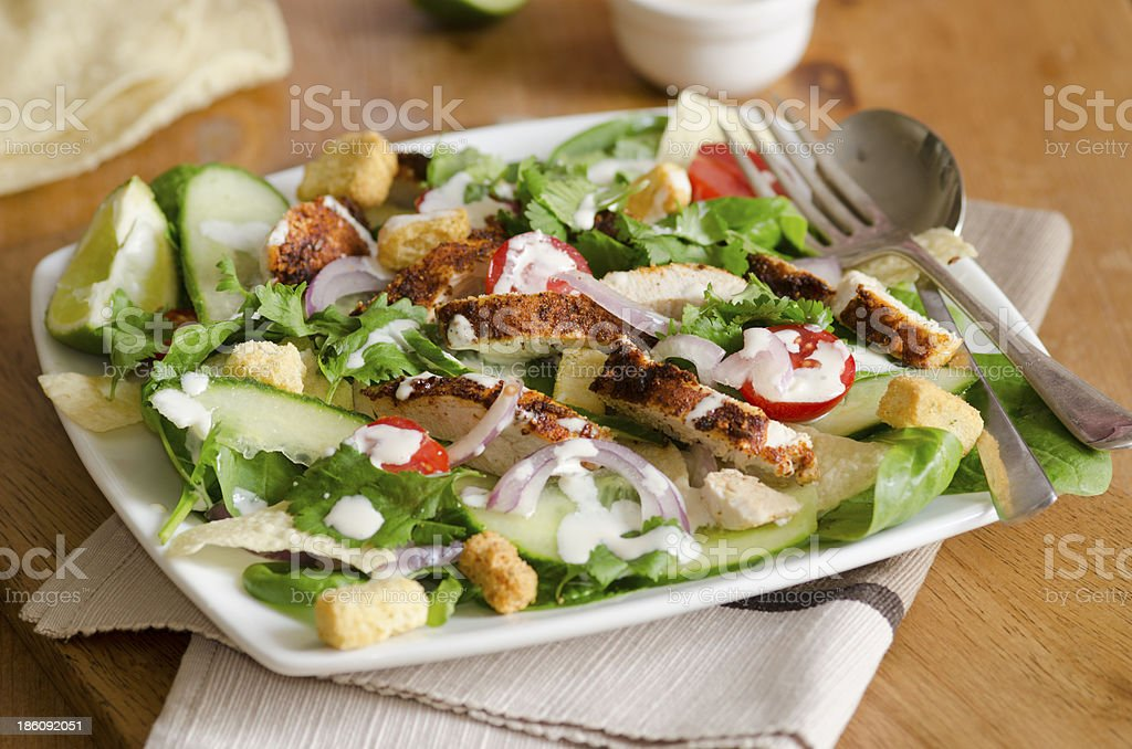 Indian chicken salad royalty-free stock photo