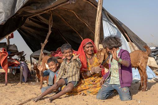 Pushkar, India - nov 13, 2018 : Indian family together with a goat lives in a hut in the desert on time Pushkar Camel Mela near holy city Pushkar, Rajasthan, India