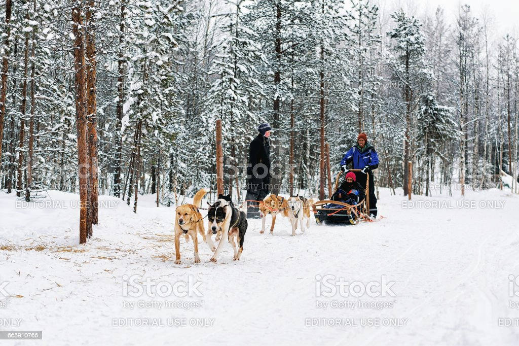Indian family with child riding husky dogs sledge in Lapland foto stock royalty-free