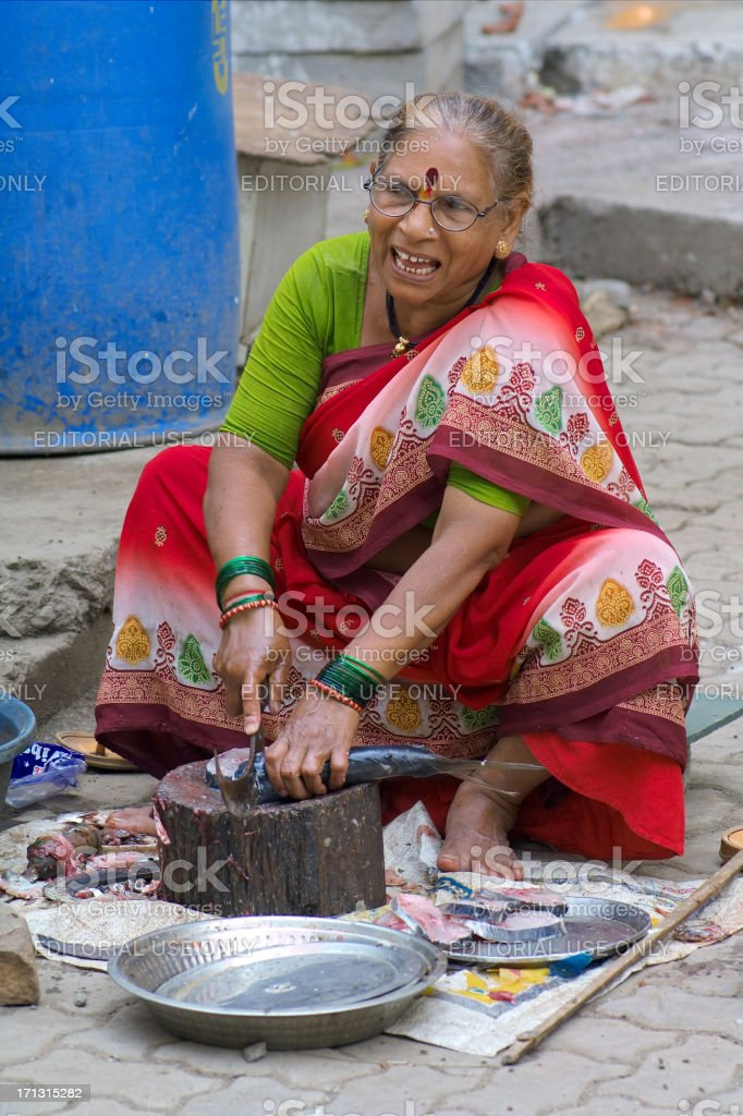 Indian Fish Seller royalty-free stock photo