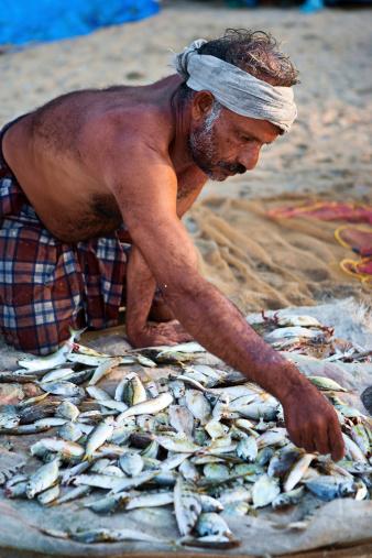 Indian fisherman at work, Kerala, India.http://bem.2be.pl/IS/rajasthan_380.jpg