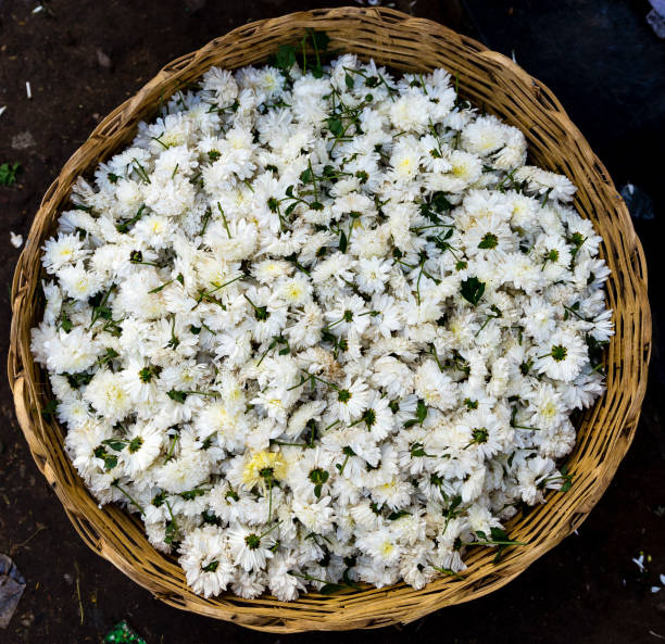 Indian flower market, Madurai stock photo