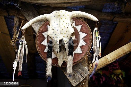 1151385192 istock photo Indian goat skull 1222002964