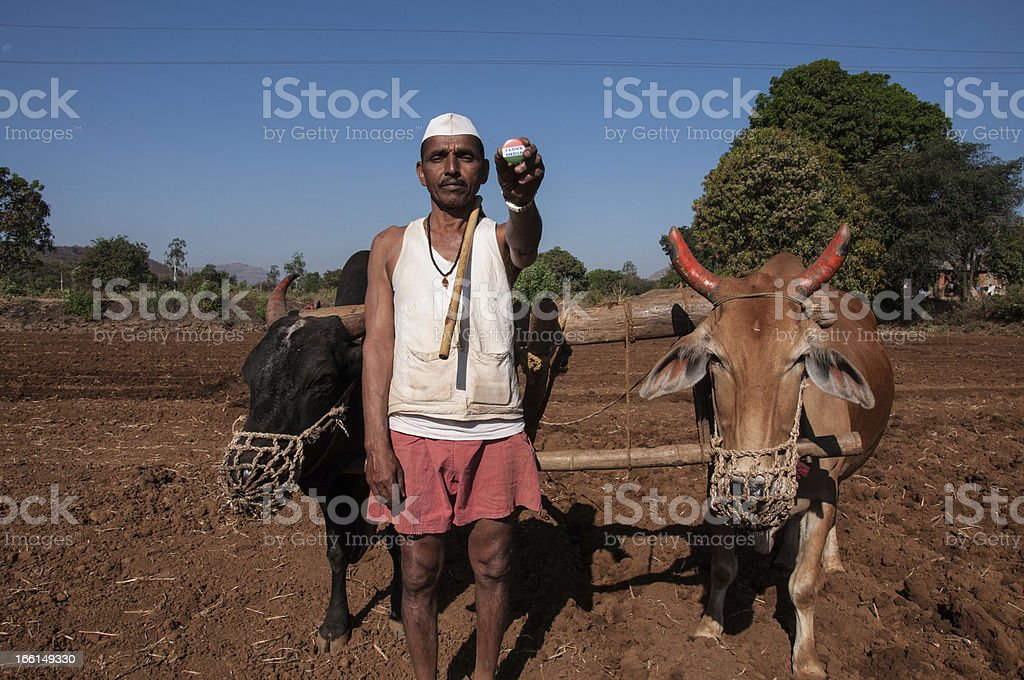 Indian happy Farmer holding india Batch royalty-free stock photo