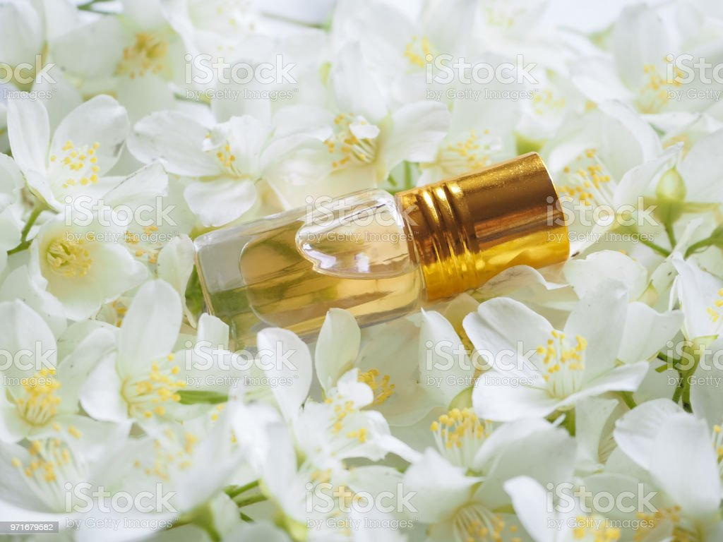 Indian jasmine attar oil natural jasmine flower oil for relaxation indian jasmine attar oil natural jasmine flower oil for relaxation and bliss royalty izmirmasajfo
