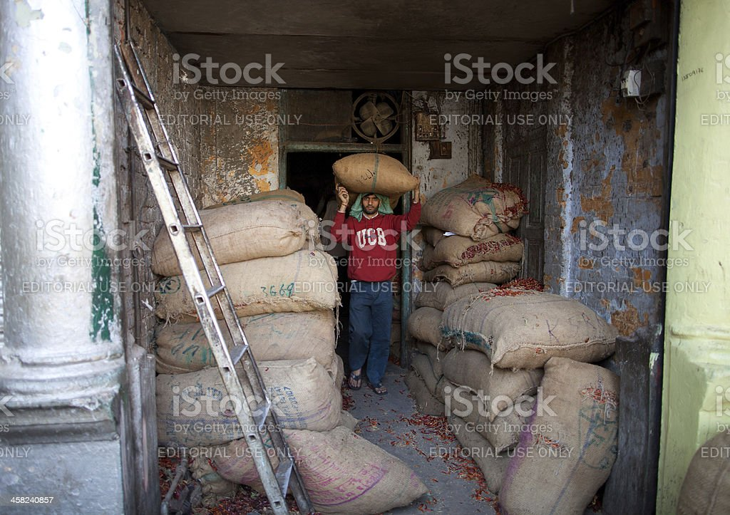 Indian laborer in New Delhi, India royalty-free stock photo