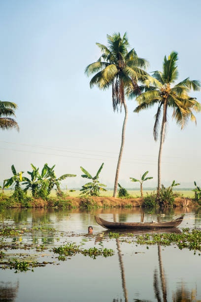 Indian man fishing using traditional method in Alleppey backwaters, Kerala stock photo