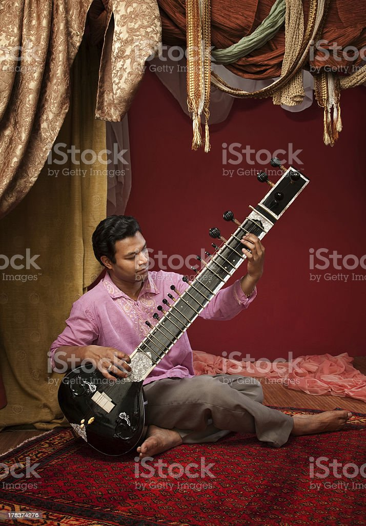 Indian Man Plays a Sitar stock photo