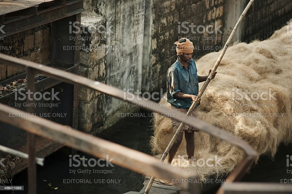 Indian man transporting hay in the boat. stock photo