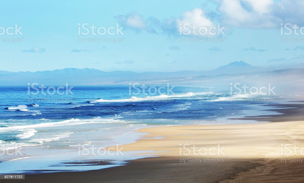 Indian Ocean and Dunes of East Cape South Africa stock photo