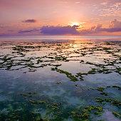 Indian Ocean off the coast of Zanzibar