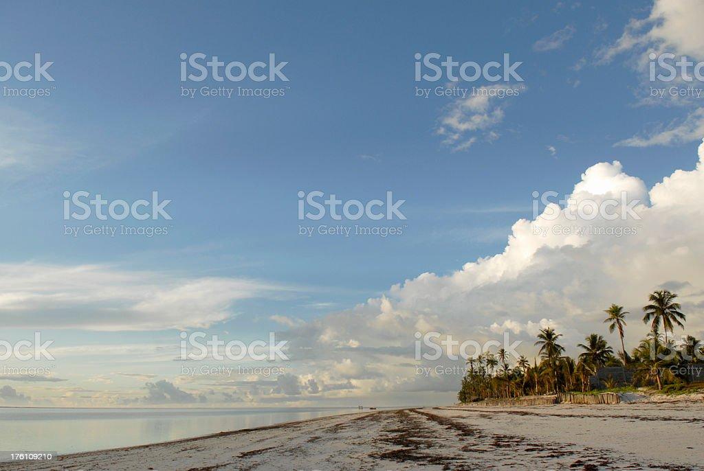 Indian Ocean shore stock photo