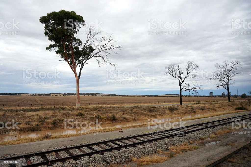Indian Pacific train view stock photo