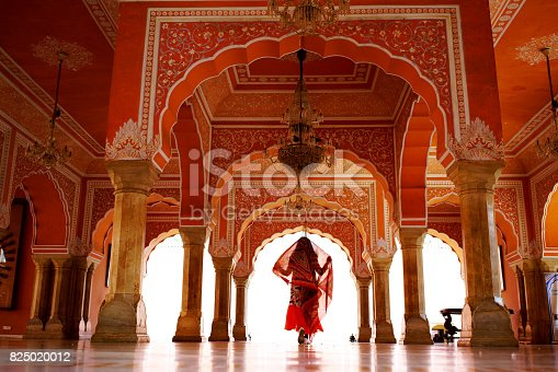 A woman traveling in Indian Palace