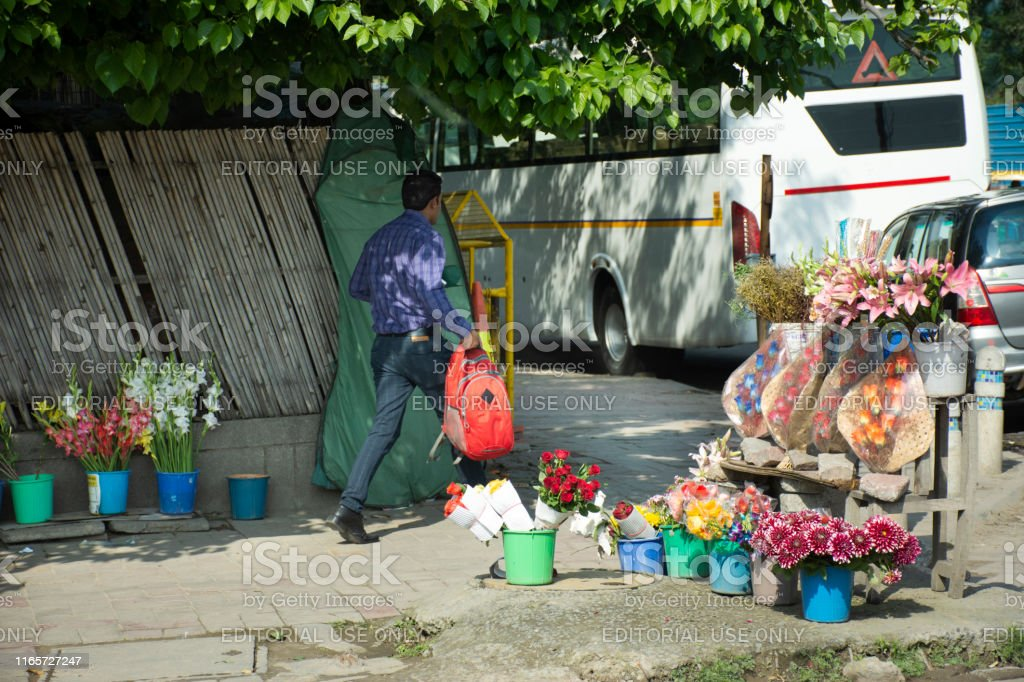 Indian people sale and buy tree plant and flowers gifts from local...