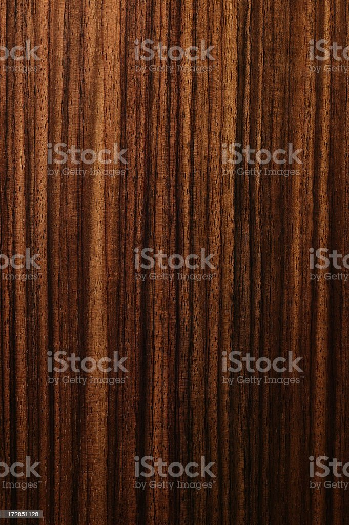 Indian Rosewood royalty-free stock photo