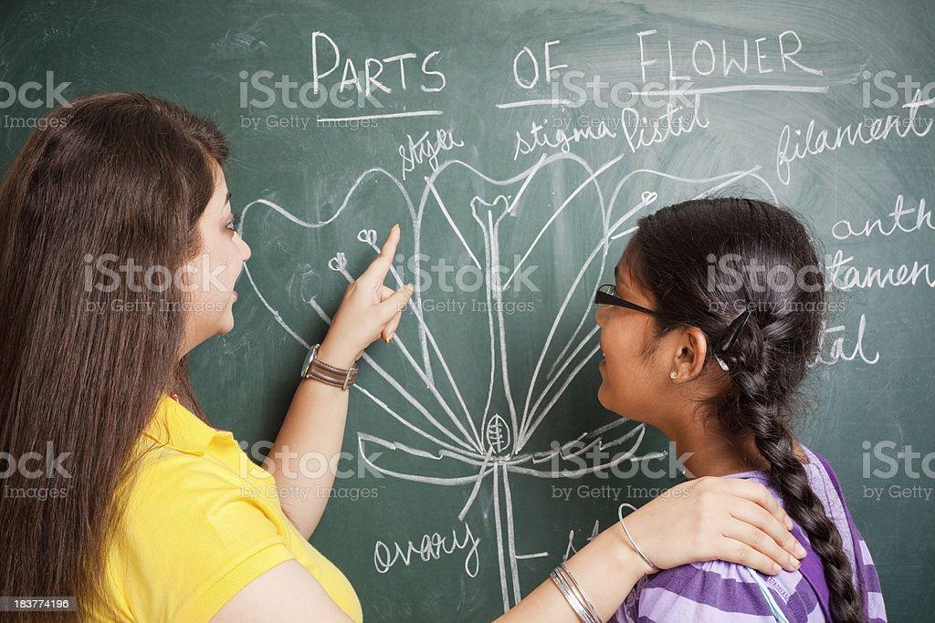 school-teacher-pink-world-fat-younggirls