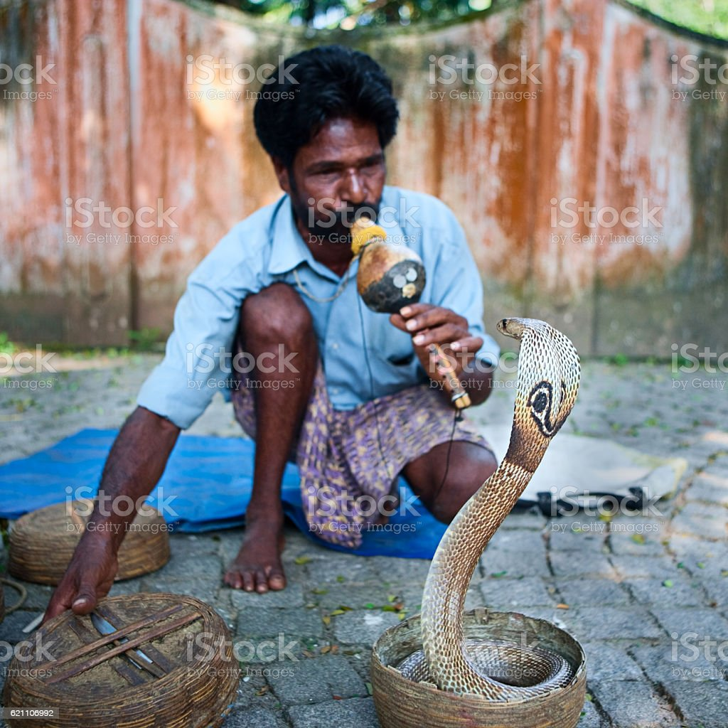 Indian snake charmer near Fort Kochi, Kerala stock photo