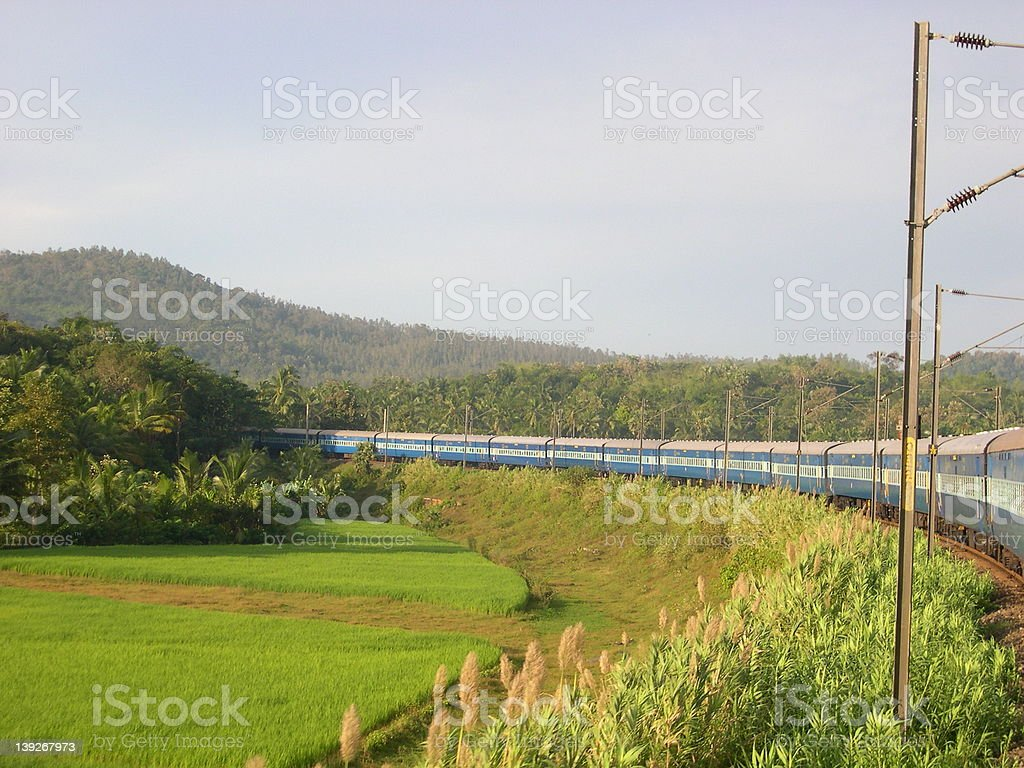 Indian snake on Indian rails royalty-free stock photo