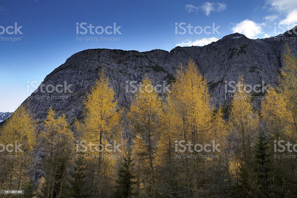 indian summer in austria royalty-free stock photo