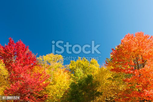 Indian Summer at the White Mountain National Forest in New Hampshire, USA