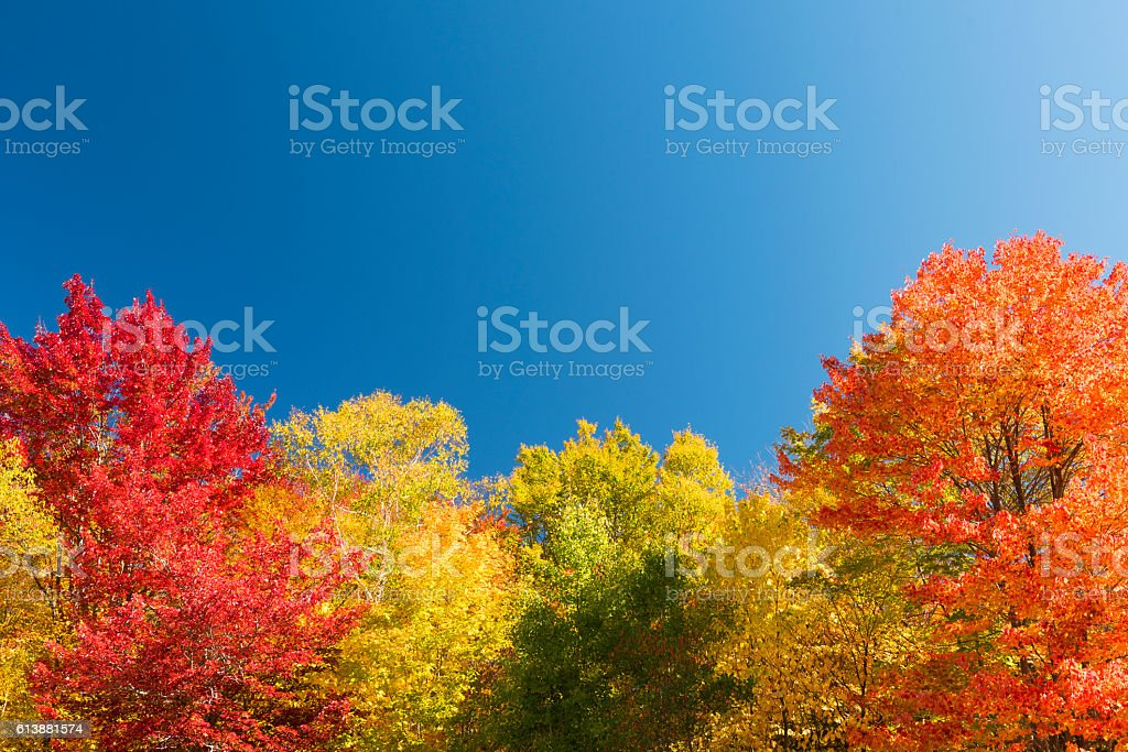 Indian Summer in New Hampshire, USA stock photo