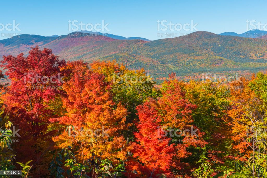Veranillo en New Hampshire, Estados Unidos - foto de stock