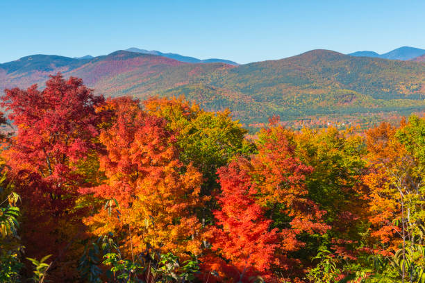 Indian Summer in New Hampshire, USA Indian Summer at White Mountain National Forest in New Hampshire, USA white mountain national forest stock pictures, royalty-free photos & images
