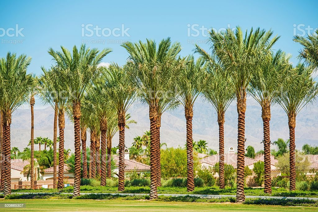 Indian Wells California USA stock photo