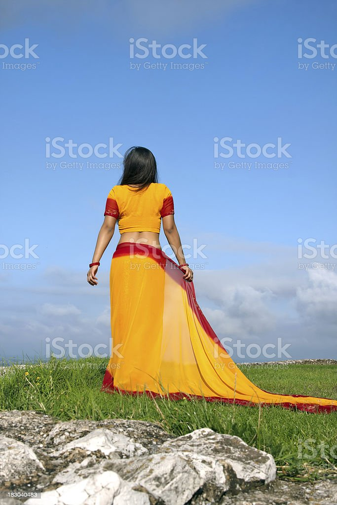 indian woman with a colorful sari royalty-free stock photo