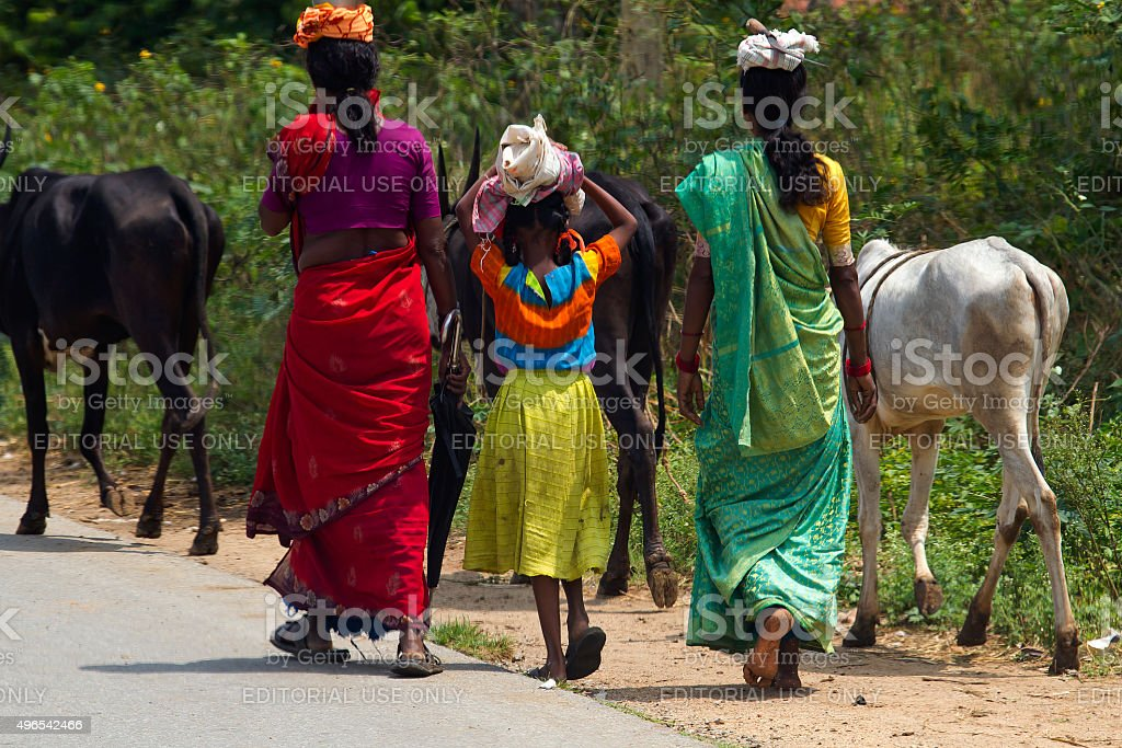 Indian womans with colored saris near Nagarhole Park stock photo