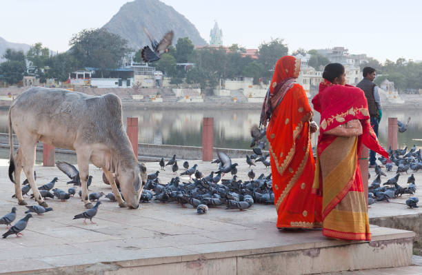 Indian women pilgrim standing on the Ghat in Pushkar, India stock photo